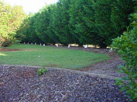 Invisible Fence Systems, Remote Training and Bark Control Collars