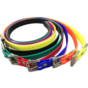 dwtp-colored-collars-2x