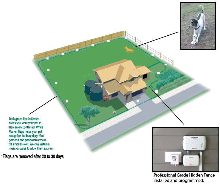 Flower Bed Maintenance Cost: How A Hidden Fence Works