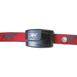 r12-programmable-dog-fence-collar