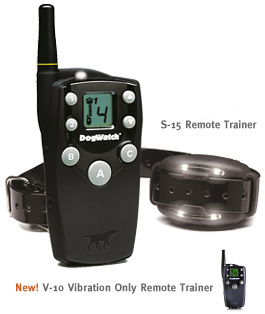big-leash-remote-trainer